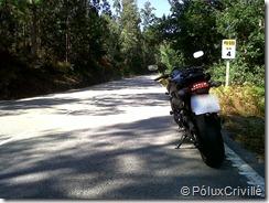 PoluxCriville-Ribadulla-Padrón-280810 (2)